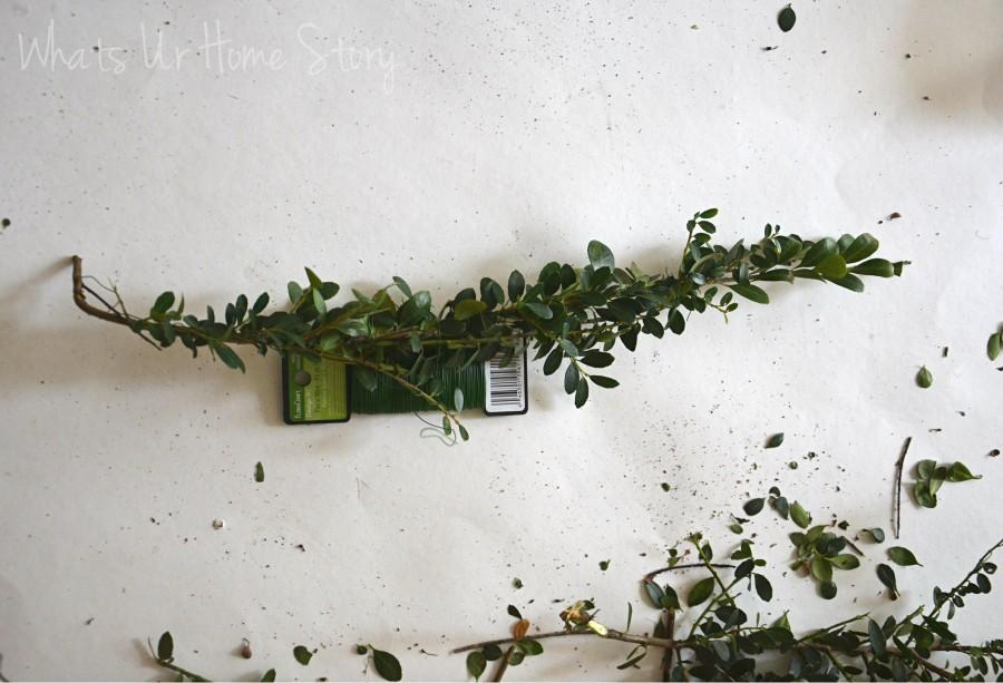 Whats Ur Home Story: Mini Boxwood Wreath tutorial