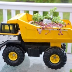 succulent-toy-truck-planter-a-fun-projects-for-the-mamas-and-kids-to-do-in-the-garden