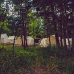 Safari Tent Neighborhood