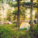 Walk In Camping