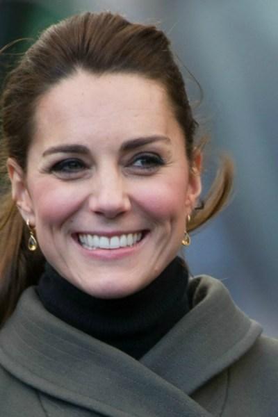 The Great Kate RepliKate Survey