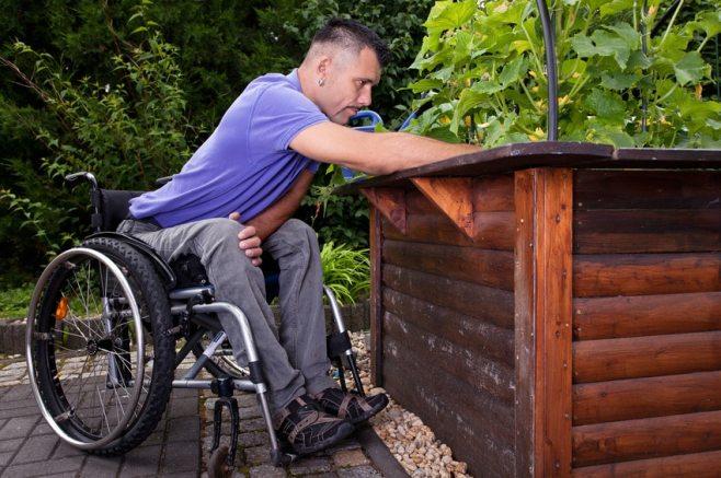 adaptive gardening