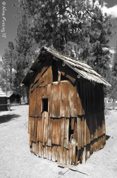 An 1890's outhouse