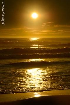 Cape D beach