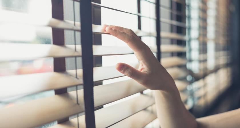 How to Pick the Best Blinds and Shades for Your Home