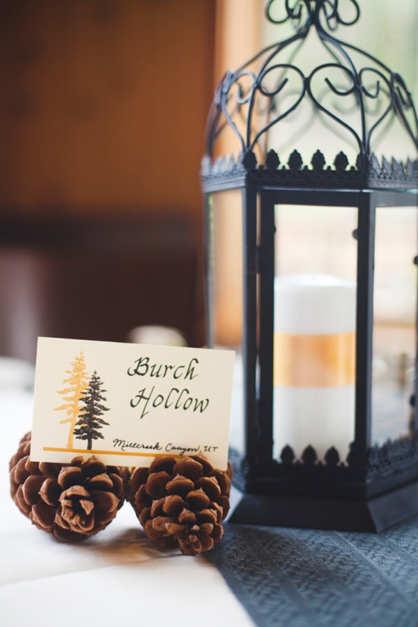 pinecones wedding http://www.pier23photography.com/