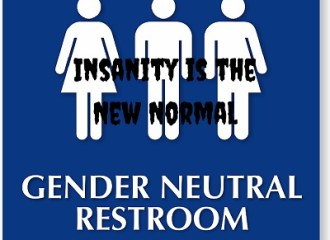 Insanity is the New Normal 1