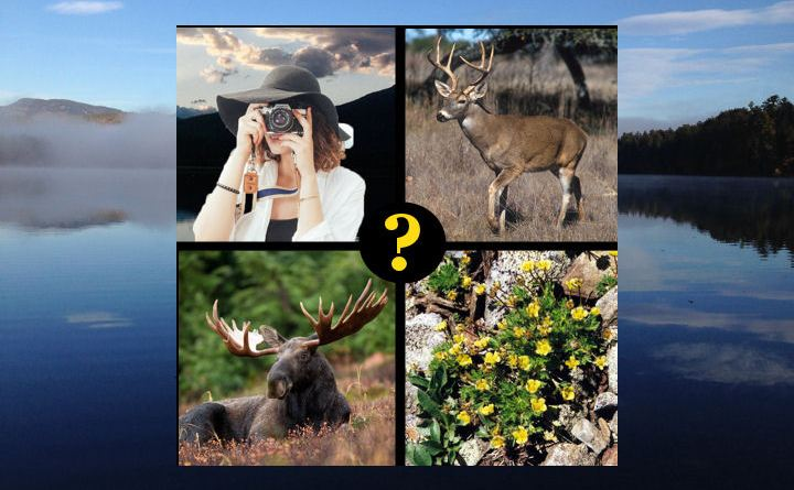 Take the quiz – how well do you know the White Mountains?