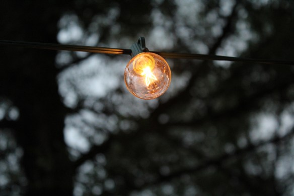 Backyard string light