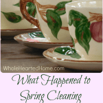 What Happened to Spring Cleaning at My House? + WholeHearted Wednesday #141