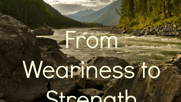 From Weariness to Strength {Week 2} + WholeHearted Wednesday #189