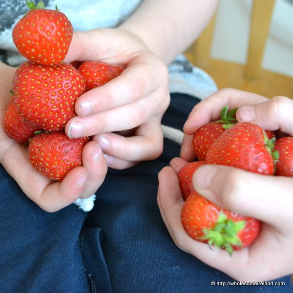 Sweet Jam - Subh Milis - Wholesome Ireland - Irish Food & Parenting Blog