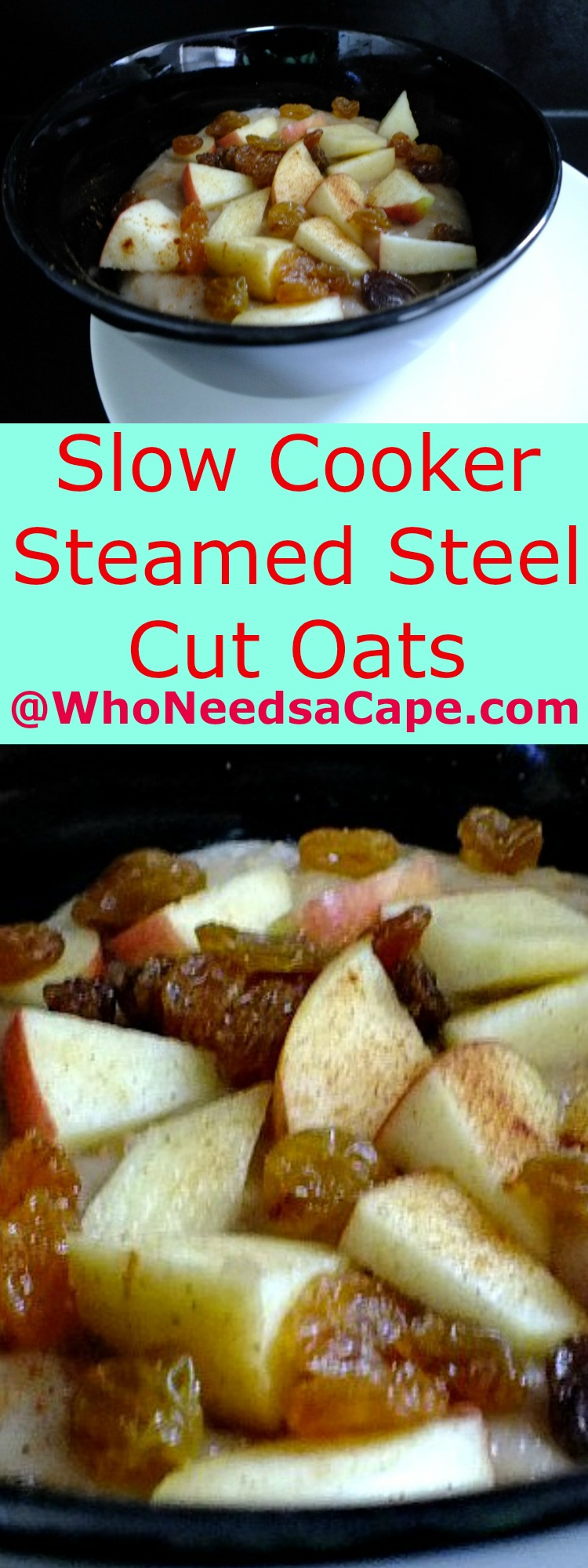 Slow Cooker Steamed Steel Cut Oats are a delish way to start your day ...