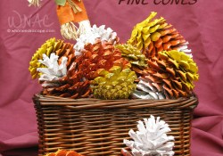 DIY Candy Corn Pine Cones