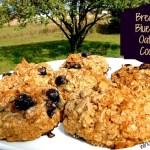Breakfast Blueberry Oatmeal Cookies