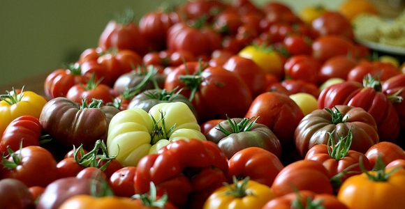 10 things to do with all those tomatoes from your garden