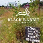 Black Rabbit Farm – The Story of Two Young, Wisconsin Farmers Starting from Scratch