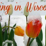 10 Ways You Know It's Finally Spring in Wisconsin