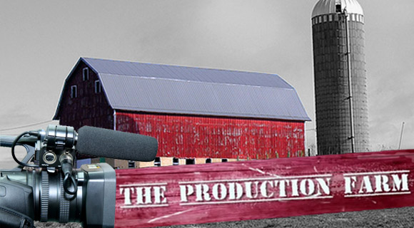 The Production Farm