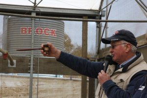 Auctioneer John Bennett Jr. points into the crowd at the UConn Beef Auction.