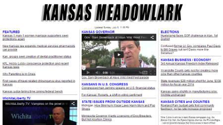 Kansas Meadowlark example