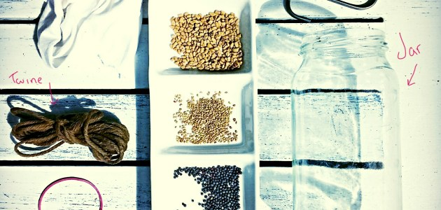 How to make your own seed sprouter