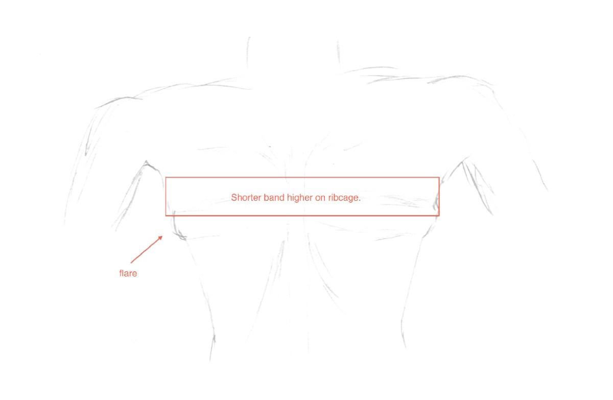 Example of how a shorter band positioned higher on the ribcage fits over a ribcage flare. Image by WideCurves.com.