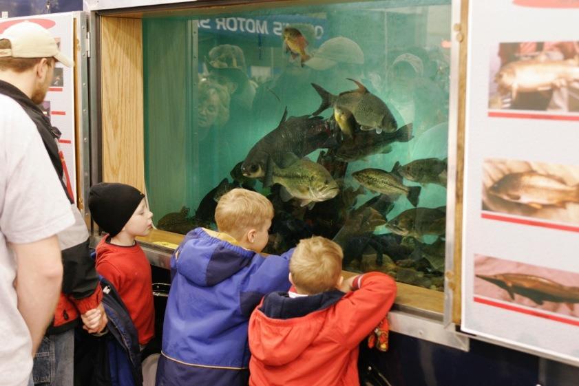 Kids stuff wisconsin fishing expo for Fishing stuff for kids