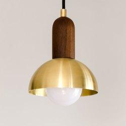 Small Crop Of Brass Pendant Light