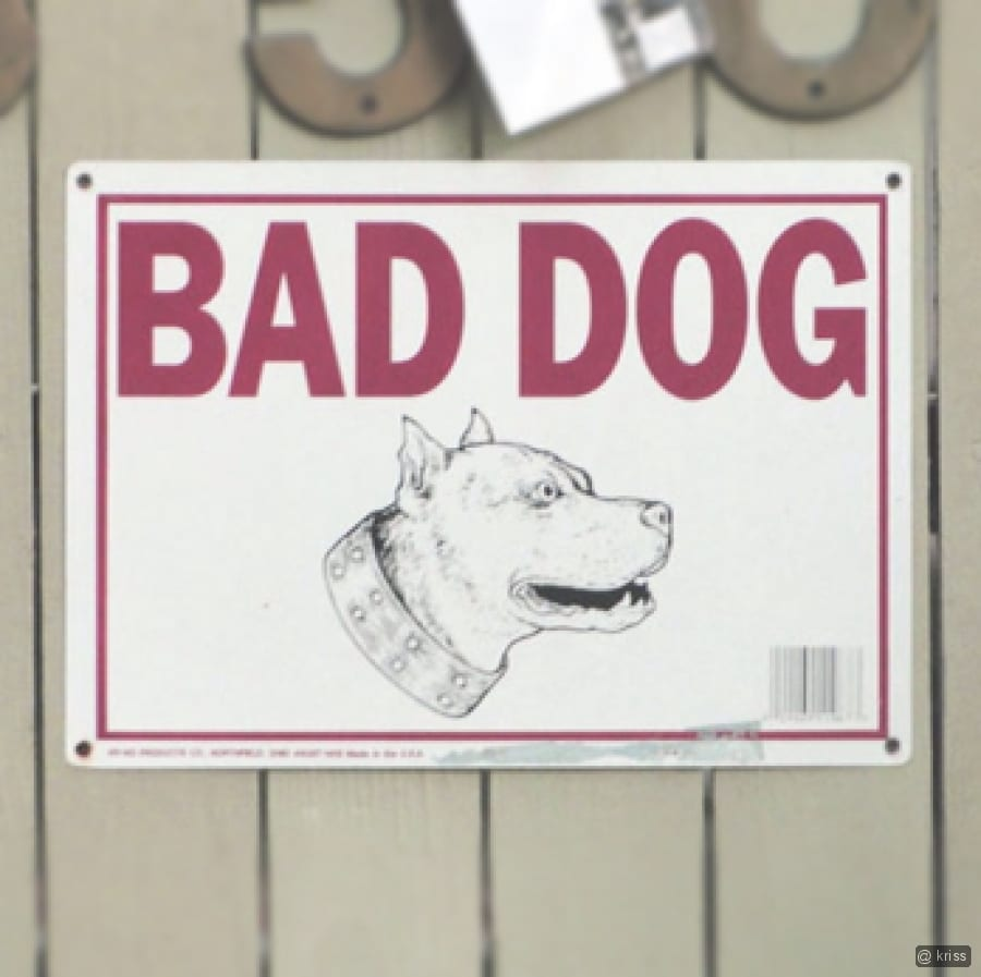 Banned In Uk: Are Bad Dogs Banned In UK?