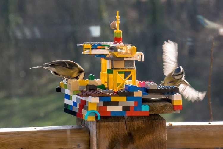 How to make bird watching fun for kids