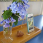 You can see how I set out the few collected treasures - a rock with a mineral imprint we found interesting, and our Virginia bluebells.  You can also see how I set my iphone up for display, too.