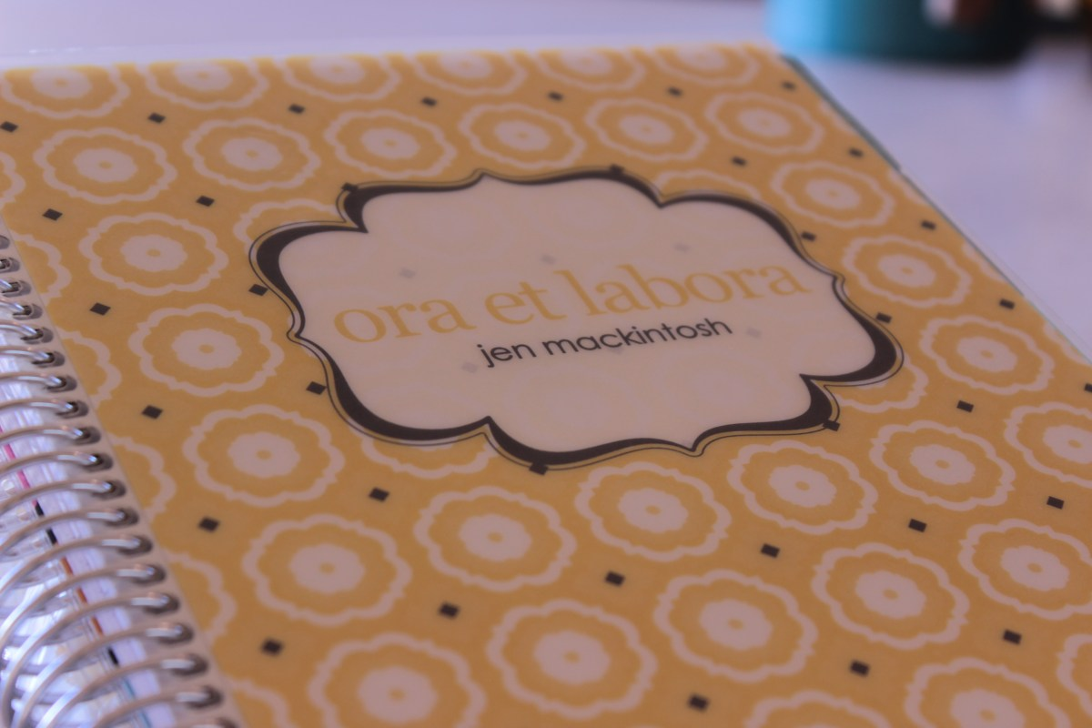 Erin Condren 2015 Life Planner Review