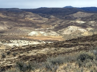 Owyhee Soda Fire: BLM's 67 Million Dollar Rehab Reaction