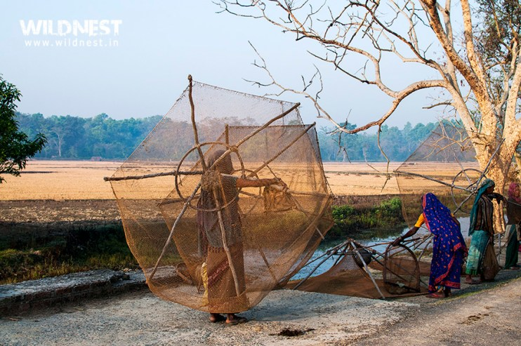 fisherwomen-dudhwa-national-park.jpg?res