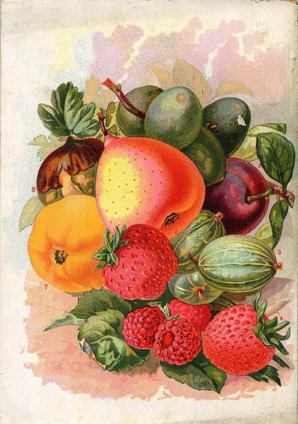 anti-inflammatory fruits