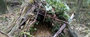 Survival Debris Hut