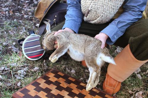 rabbit-hands