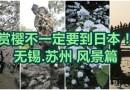 畅游无锡:苏锡风景篇 The Scenery of Wuxi