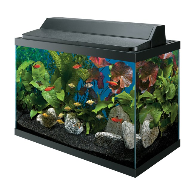 10 gallons or larger,