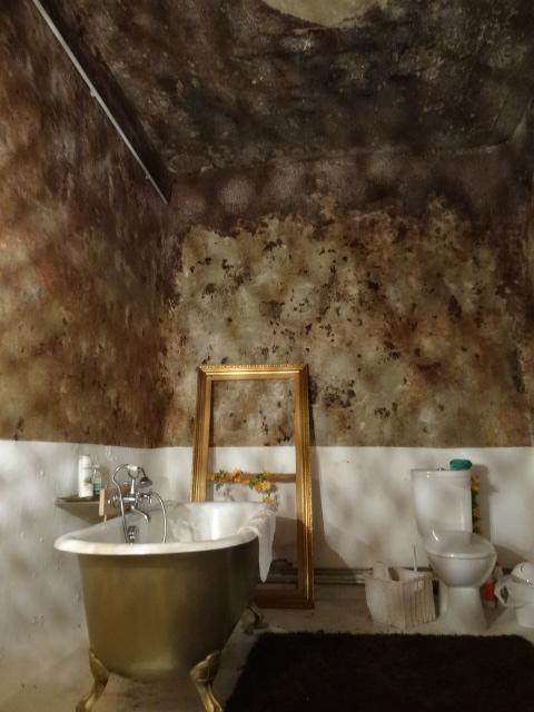 Bathroom inside the converted concrete tank.