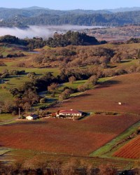 Sonoma Wine Country in Fall