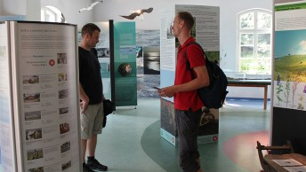 Besucher_in_der_Ausstellung_im_Granitzhaus_Ruegen
