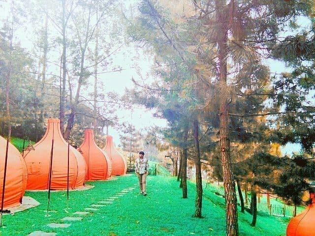 the lodge maribaya ialah tempat wisata terbaru yang berada di kawasan lembang bandung letaknya ini pada satu jalur dengan obyek