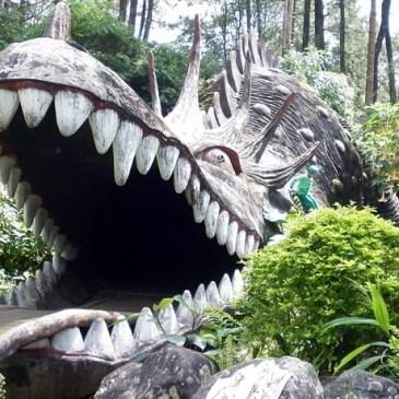 Bumi Perkemahan Mandalawangi Camping Ground Cibodas