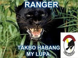musang scout ranger