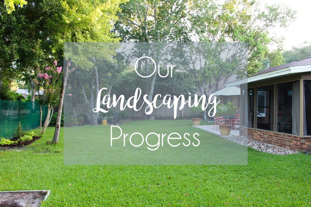 Our Landscaping Progress over the past two years