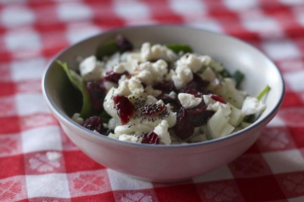 Fennel Craisin Salad