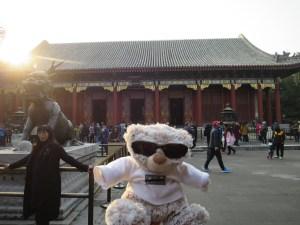 Unser WiBär in China