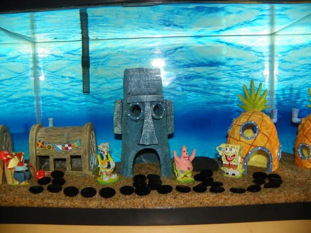 Aquarium Tank Themes Sponge bob theme